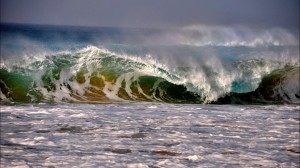 fuerteventura ocean